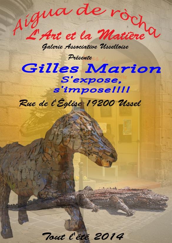 Gilles Marion 2014 copie