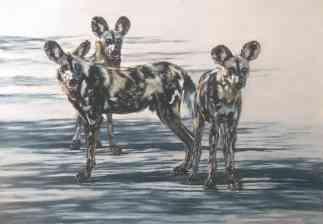 Resevoir dogs Passtel 54x74cm